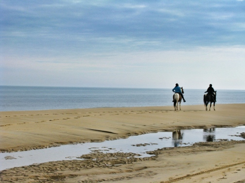 Horseback riding is a popular activity along the Cape's shores
