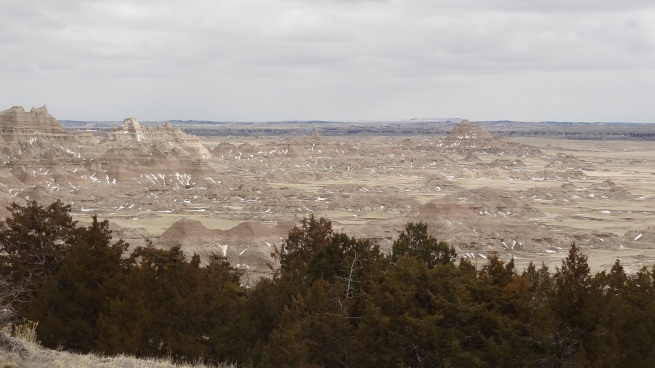 The Badlands literally appear out of nowhere along the relatively flat plains of South Dakota