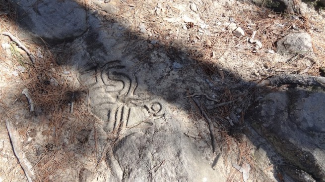 Some interesting designs and pictures carved into the rock. I imagine these were probably done not long ago, as there were names, vulgarities and phone numbers carved into another nearby rock.