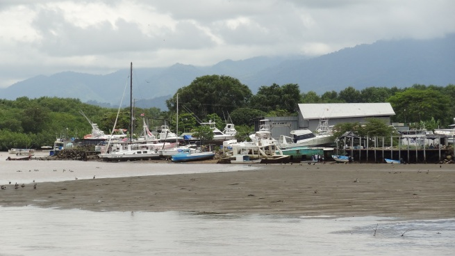 Boats docked at low tide