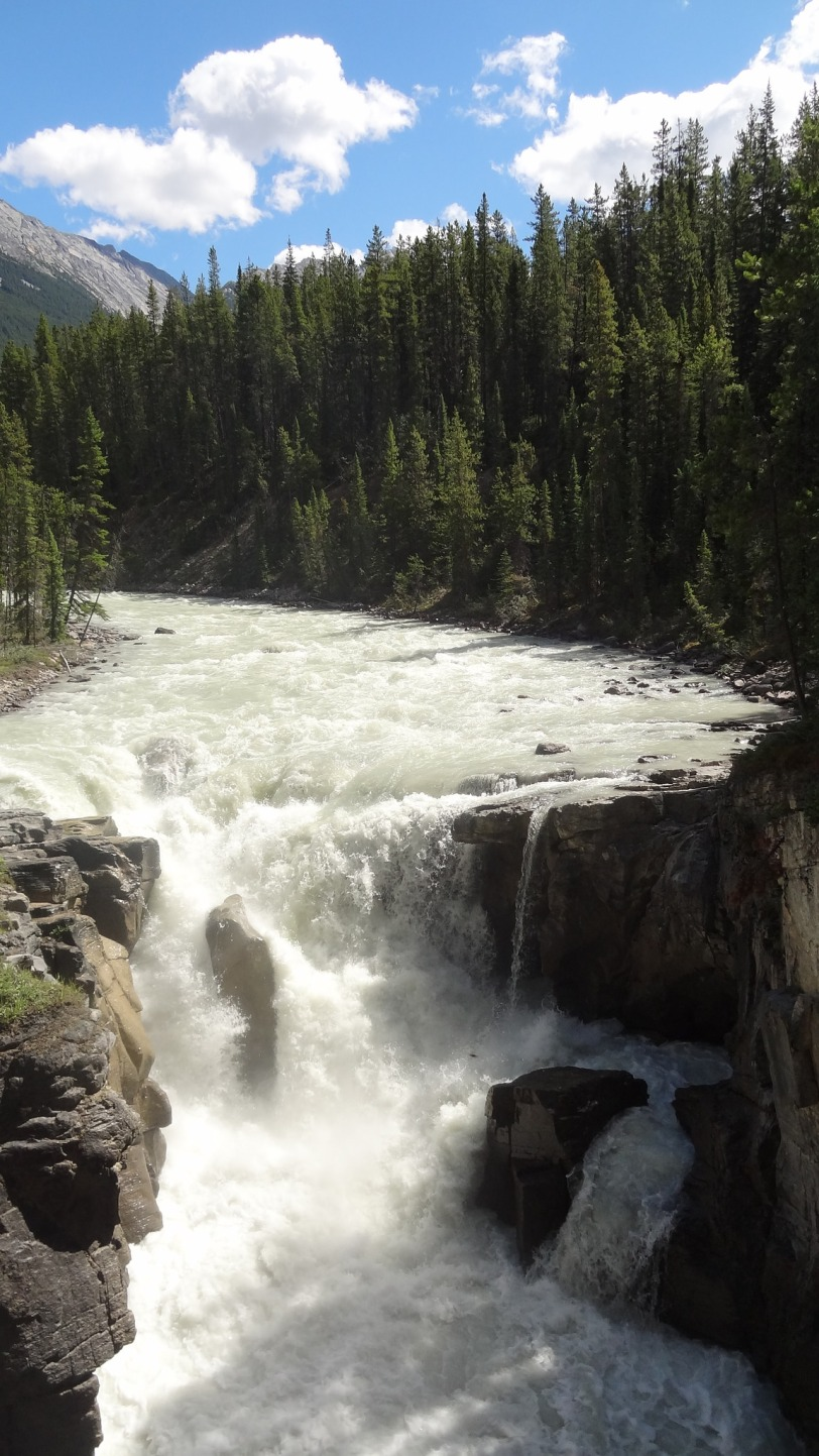 I've never seen so many waterfalls in one place! This one is Sunwapta, at Jasper.
