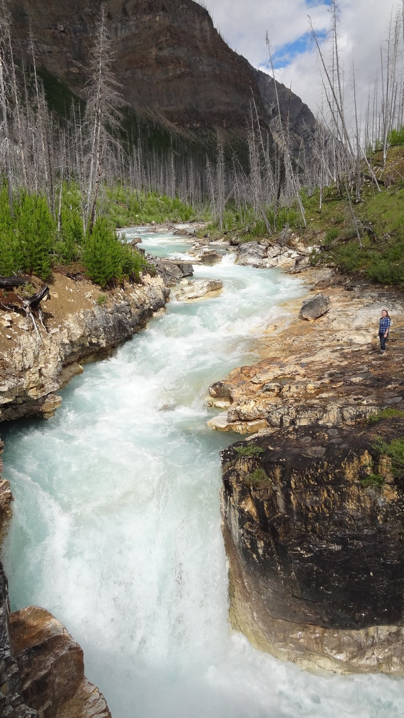 The Marble Canyon falls on the Kootenai river are impressive in their own right!