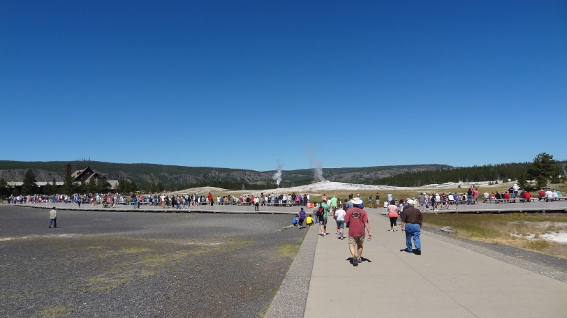 A gathering crowd about 45 minutes before an Old Faithful eruption.