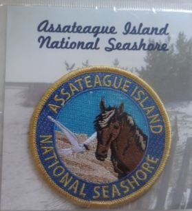 assateagueislandpatch